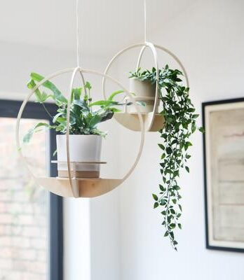 Circle 30cm Hanging Planter – Nick James