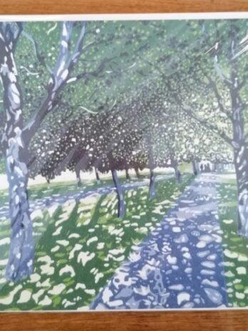 Clapham Common – Hazel McNab